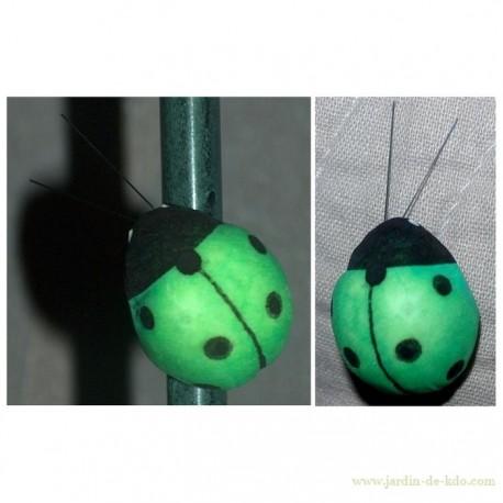 Coccinelle Verte Deux Aimants