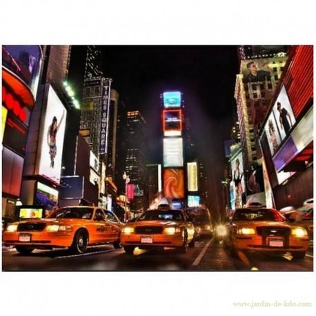 Toile tendue taxis NYC USA New York