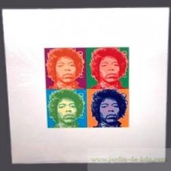 Cadre Pop Art Jimmy Hendrix Wahrol