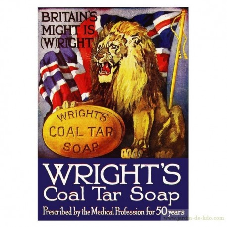 Plaque pub savon lion UK Wright's Soap