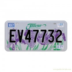 Plaque métallique américaine Tennessee State Parks Iris