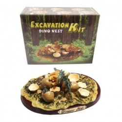 Kit fouille de dino Excavation Kit